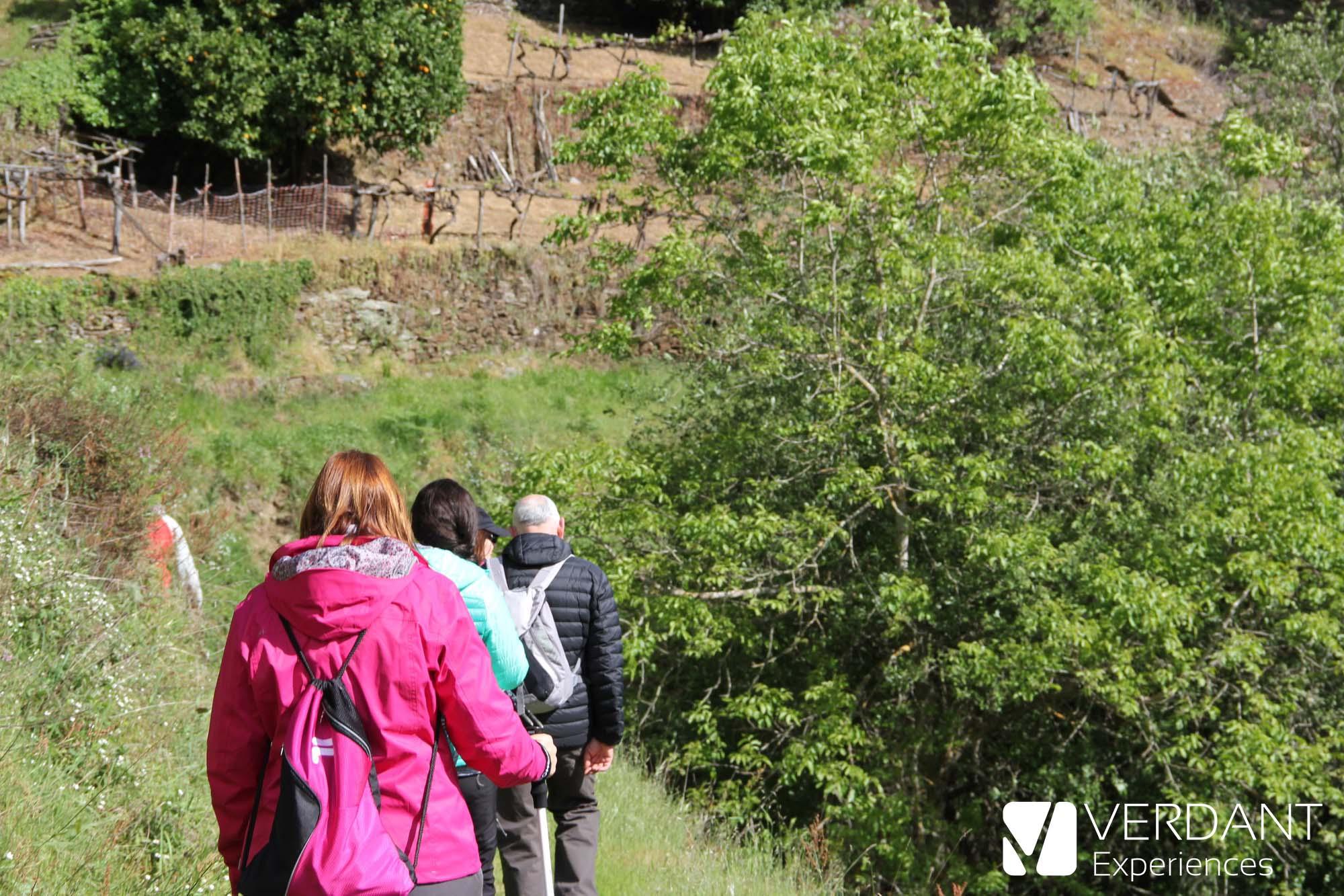 Ribeira Sacra Hiking Festival 2018